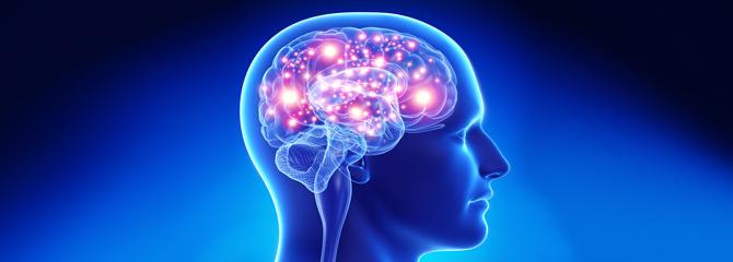 Programação Neuro Linguística aplicada à memória - Blog -