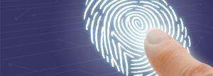 SEO – Gerando tráfego, relevância e identidade digital