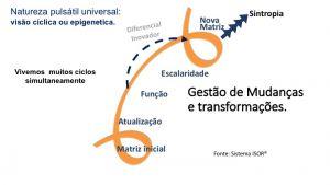 Gestão da transformação